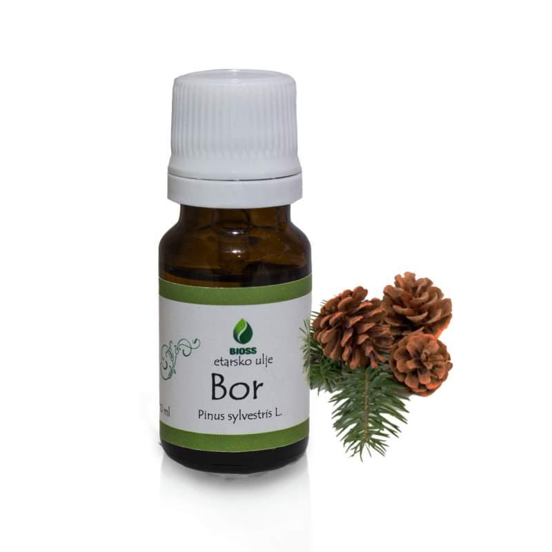 Pine essential oil (Pinus nigra)