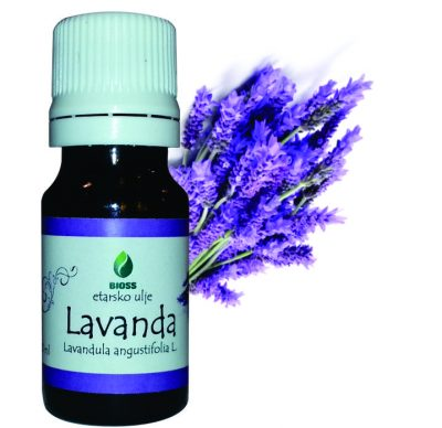 Etarko ulje Lavanda Lavandula angustifolia