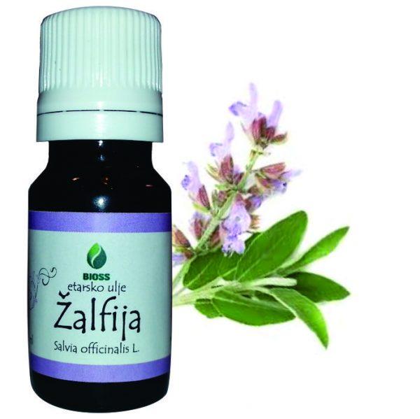 Etarsko ulje Žalfija Salvia officinalis