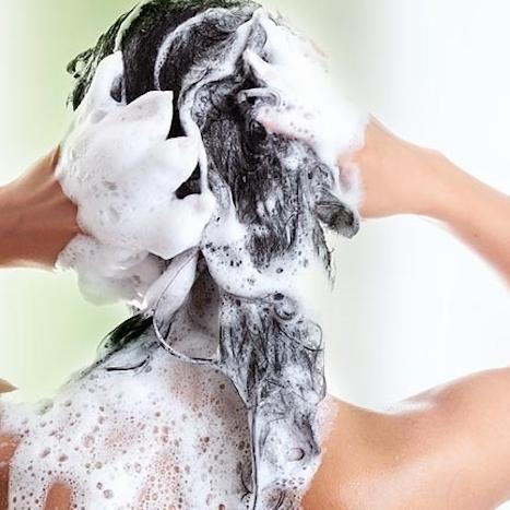 Šamponi